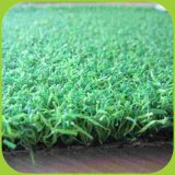 Venda a quente OEM piscina artificial PA Putting green de golfe Grass