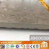 Azulejo esmaltado rústico 60X60 cm de Matt del terrazo para de interior y al aire libre (JB6004D)