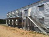 azienda agricola di pollo d'acciaio della costruzione di 125X15X2.5m con tutte le strumentazioni