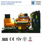 700ква газогенератор с двигателя Googol 50Гц