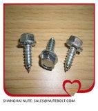 Acier inoxydable 304 bride de filetage principale d'hexa de vis de rondelle de l'hexagone 316 DIN6928