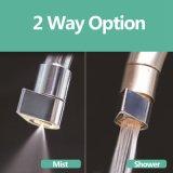 Het nieuwe twee-Functie Beluchtingstoestel van het Messing van de Tapkraan van de Besparing van het Water met de Toebehoren van de Mixer van de Keuken van de Mist van het Water