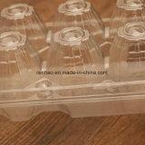 Caixa de armazenamento transparente desobstruída plástica prática da caixa do ovo