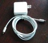 61W type adaptateur de chargeur de course de mur de palladium de C pour le chargeur de tablette de MacBook