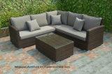 Silla de mimbre 4PC con los conjuntos al aire libre del sofá del amortiguador con la mesa de centro (TG-218)