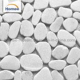 De mooie Tegel van de Steen van het Mozaïek van de Kiezelsteen van de Kleur van het Ontwerp Witte Marmeren