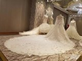 Luxuxspitze-Ballkleid-Hochzeits-Kleid des schal-2017