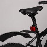 넓은 Handbars를 가진 대중적인 최신 인기 상품 뚱뚱한 타이어 전기 자전거