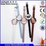 Heiße verkaufenuhr-Uhr-Legierungs-Uhr für Frauen (Wy-108D)