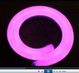 Muestra de neón de la flexión de SMD 2835 LED (color de rosa, 220V, 12V)