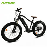 Ville Ebike 48V 14,5Ah 1000W vélo électrique