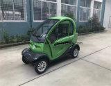 Porta Closed do mini carro elétrico da bateria de lítio para duas pessoas