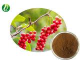 Wu Wei Zi / Schisandra Chinensis extracto com 12% Schisandrins