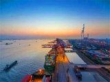 De Dienst van de Cargadoor van de kwaliteit van Guangzhou aan Davao