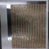 Le tomaie di Sandel che coprono il Rhinestone di vetro mette a nudo 24*40cm