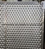 Placa de la hendidura de la placa de almohadas de placa de inmersión Fficiency el intercambio de calor