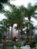Utilisation extérieure ou d'intérieur de palmier artificiel de cocos