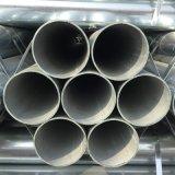 Q195 che recinta il quadrato delicato del carbonio ha saldato il TUFFO caldo fornitore galvanizzato 1.5 pollici tubo/del tubo d'acciaio per la serra