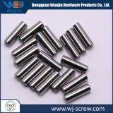 China Fornecedor Preta metálica prateada de alumínio Long Parafuso Pequeno Pino
