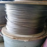 316 7X7 Stainnless Steel Wire Rope 3mm