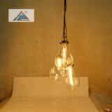 Defina Edison Pendente de vidro da lâmpada (C5006152-3)