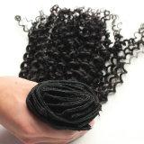 Clip riccia crespa di Afro brasiliano di Dlme nell'estensione dei capelli umani