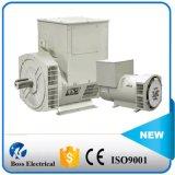 250kVA 200kw Nieuw die Type Stamford in Diesel Generator wordt gebruikt