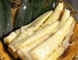 De gehele Verse Kokende Spruit van het Bamboe