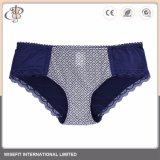 Nylonspandex-Wäsche-Unterwäsche-gesetzter Büstenhalter