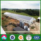 Vorfabrizierte China-Stahlkonstruktion-Geflügelfarmen mit Cer, CSA&as Bescheinigung