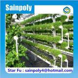 판매를 위한 공장 디자인 농업 이용된 Hydroponic 온실