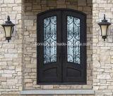Werksgesundheitswesen-hochwertige Stahleisen-Einlage-Eintrag-Türen