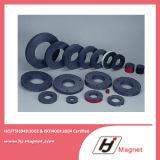 Forte magnete permanente personalizzato eccellente di NdFeB dell'anello del ferrito di bisogno N35-N52 dalla fabbrica della Cina