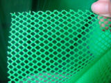 플라스틱 Flat Net 또는 Turf Reinforcement Mesh/Grass Protection Plastic Mesh