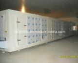 Непосредственно на заводе туннеля IQF питания быстрого морозильное оборудование для обработки продуктов питания