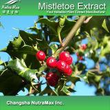 100% натуральные Mistletoe извлечения (4 1 5 1 10: 1)