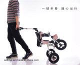 4in1 de Driewieler van de baby met de Staaf van de Duw/de Baby Trike van de Luifel van de Paraplu voor Peuter