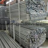 Китай 2016 сооружением Wholesales Ringlock для
