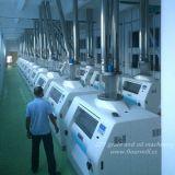 überschreiten grosser komplette Set-Mehl-Prägeproduktionszweig Produkt-Qualität des Projekt-500tpd nationale Standards
