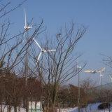 지적인 Wind Turbine Generator 10kw Power System