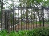 Rete fissa rivestita del ghisa della decorazione del giardino della polvere