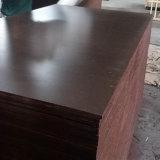 Matériau de construction phénolique Shuttering fait face par film de contre-plaqué de peuplier de Brown (18X1250X2500mm)