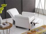Muebles de cuero del sofá de Italia del ocio (775)