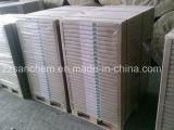 Du papier autocopiant pour du papier en continu/register/factures d'utilisation de formulaires