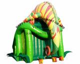 De Opblaasbare Dia van Inflatables Gaint Chamaleon van het Pretpark