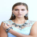 Neues Feld-Harz-Acrylohrring-Armband-Halsketten-Form-Schmucksache-Set