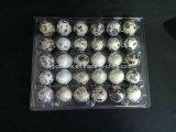 Uovo di quaglie di plastica a perdere puro degli imballatori del cassetto 18 dell'uovo di quaglie Contaier 18 fori