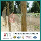 Rete fissa del cavallo della maglia tessuta collegare galvanizzata rete fissa della rete fissa del campo/ferro dell'azienda agricola