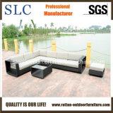 Meubles de jardin de rotin/bâti de sofa extérieur/sofa attrayant (SC-B8915)