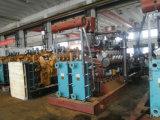 groupe électrogène de la biomasse 600kw avec l'alternateur de Siemens